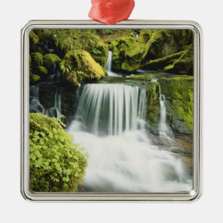 Oregon, Waterfall in Willamette national Silver-Colored Square Decoration