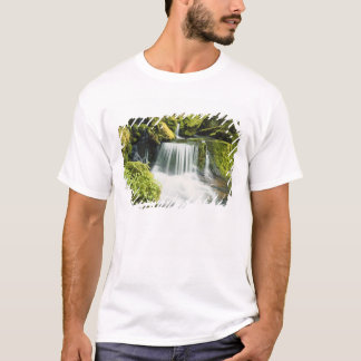Oregon, Waterfall in Willamette national T-Shirt