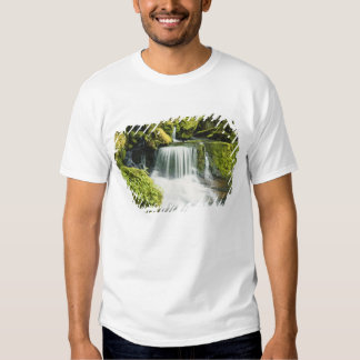 Oregon, Waterfall in Willamette national T Shirts