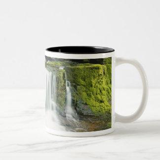 Oregon, Waterfall in Willamette national Two-Tone Coffee Mug
