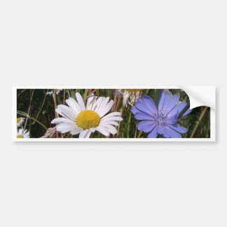 Oregon Wildflowers Bumper Stickers