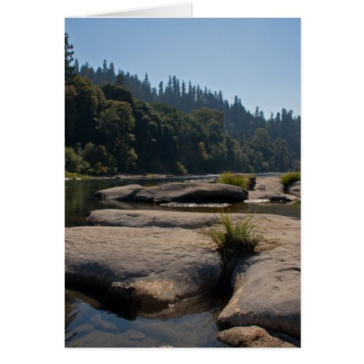 Oregon's Beautiful Umpqua River Cards