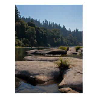 Oregon's Beautiful Umpqua River Postcard