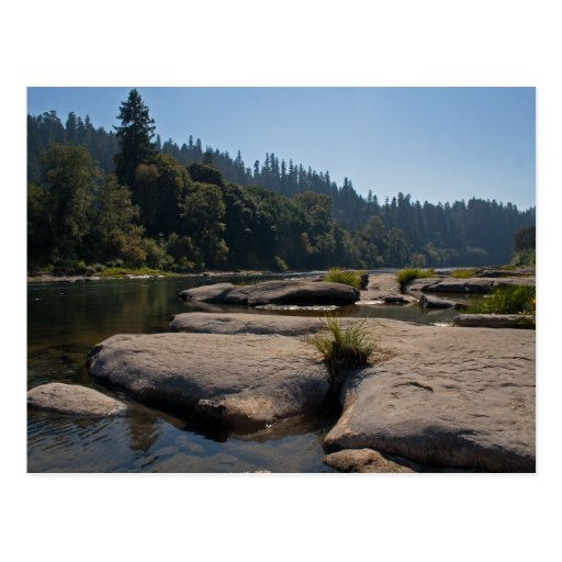 Oregon's Beautiful Umpqua River Post Card