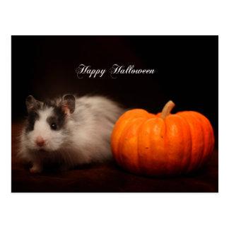 Oreo s Halloween Post Cards