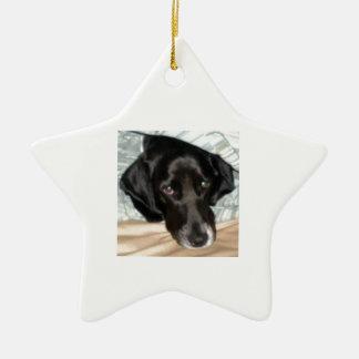 Oreo the English Springer Spaniel Dog Ceramic Star Decoration