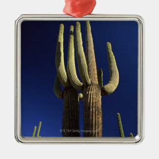 Organ pipe cactus national monument in Arizona Christmas Ornament