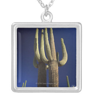 Organ pipe cactus national monument in Arizona Silver Plated Necklace