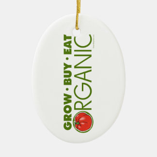Organic Christmas Ornament