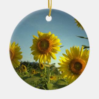 Organic Gardening Ornament