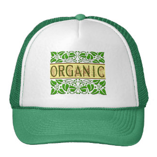 Organic Green Slogan Mesh Hat