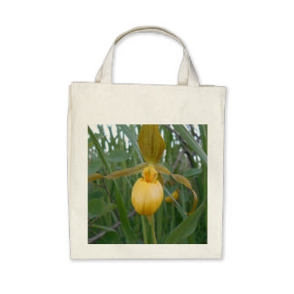 Organic Grocery Tote Canvas Bag