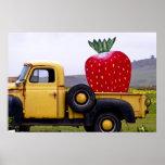 Organic Strawberry Poster