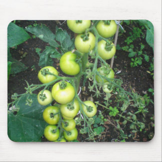 Organic Tomatoes Mouse Pad