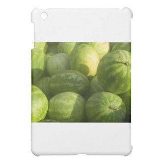 organic watermelons case for the iPad mini