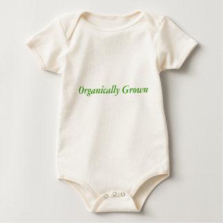 Organically Grown Creeper