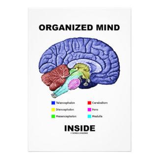 Organized Mind Inside Anatomical Brain Attitude Custom Invites
