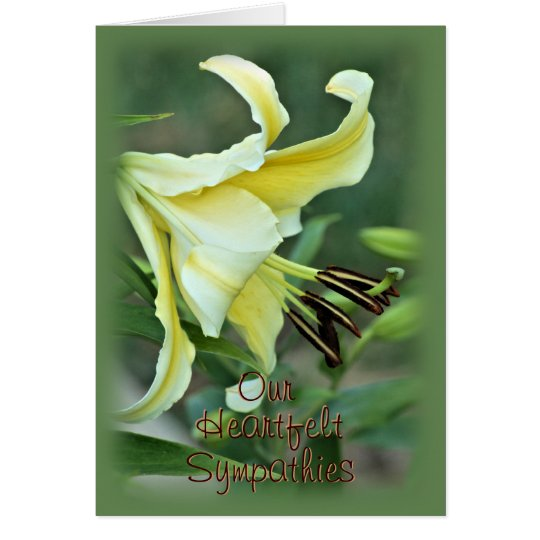 Oriental 3538 Lily for any occasion Card