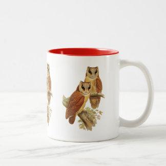 Oriental Bay Owl Two-Tone Coffee Mug