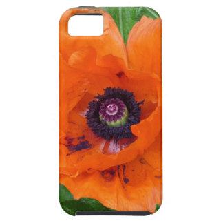 Oriental Garden Poppy iPhone 5 Cover