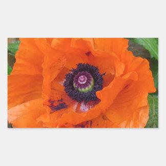 Oriental Garden Poppy Rectangular Sticker