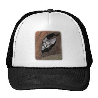 Oriental Kitten 9Y796D-013 Mesh Hat