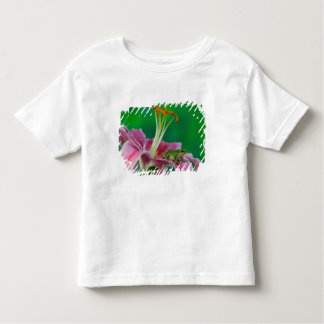 Oriental Lily and Pacific tree frog resting on Toddler T-Shirt