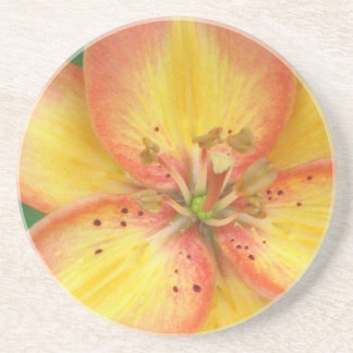 Oriental Lily Coaster