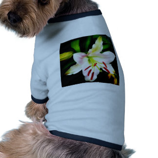 Oriental Lily Dog T-shirt