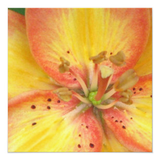Oriental Lily Invitations