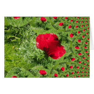 Oriental Poppy Fractal Greeting Cards