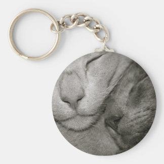 Oriental Shorthair Cats Keyring