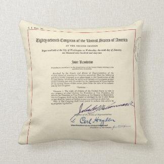 ORIGINAL 24th Amendment U.S. Constitution Throw Cushions