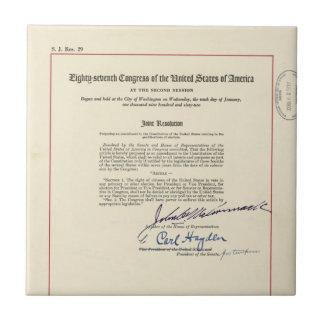 ORIGINAL 24th Amendment U.S. Constitution Ceramic Tiles