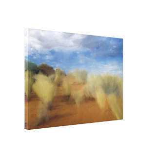 Original African Wasteland Canvas Print