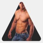 Original PhotArt - Muscular Torso in Hat & Jeans Triangle Stickers