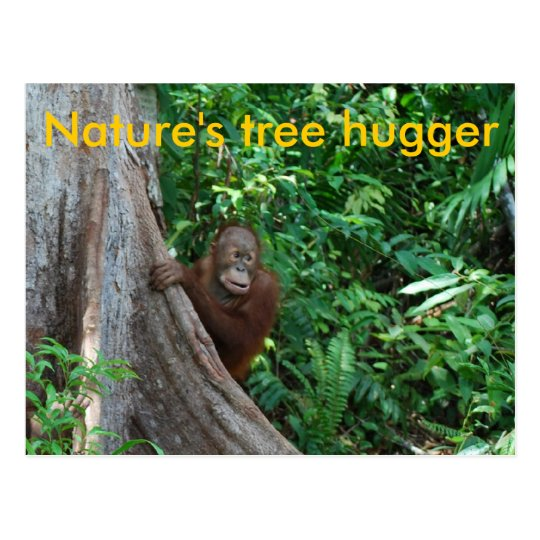 Original Tree Hugger Borneo Nature Postcard