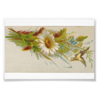 Original Vintage Card Image Flower Bird Photo