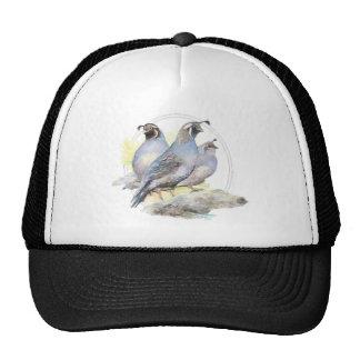 Original Watercolor California Quail Bird Cap