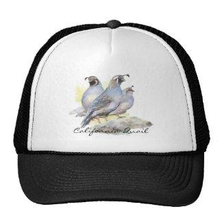 Original Watercolor California Quail. Bird Cap