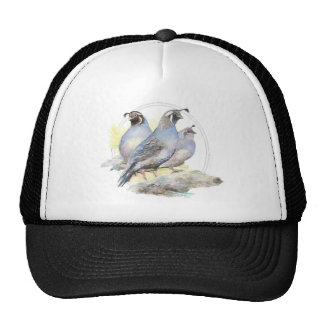 Original Watercolor California Quail Bird Trucker Hats