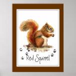 Original Watercolor Red Squirrel Tracks Animal Poster