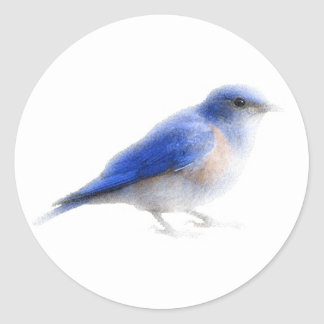 Original watercolour blue bird (bluebird) sticker