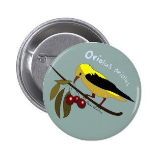 """Oriolus oriolus swipes in "" 6 Cm Round Badge"