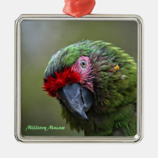 Ornament: Military Macaw (Premium Square) Silver-Colored Square Decoration