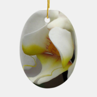 Ornament - Orchid