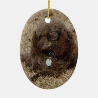 Ornament:  Pet, Poodle, Minature Ceramic Oval Decoration
