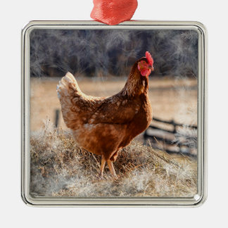 Ornament with frosted edging of barnyard hen