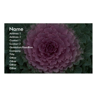 Ornamental cabbage texture pack of standard business cards