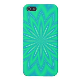 Ornamental design iPhone 5 covers